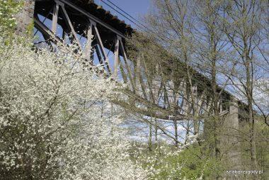 Most kolei normalnotorowej
