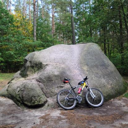 Diabelski Kamień w Leosi