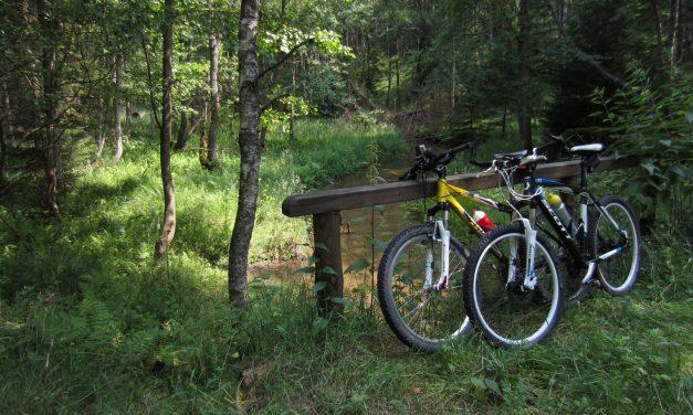 Przewodnik rowerowy po Borach Tucholskich (pdf)