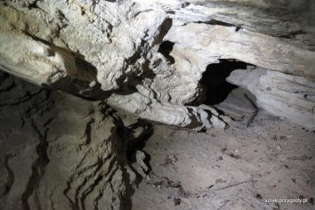 Wnętrze jaskini Bajka
