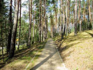 Szutrowa ścieżka rowerowa na Kaszubskiej Marszrucie