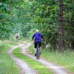 Rowery elektryczne a turystyka rowerowa (dla kogo, wady, zalety, przegląd oferty)