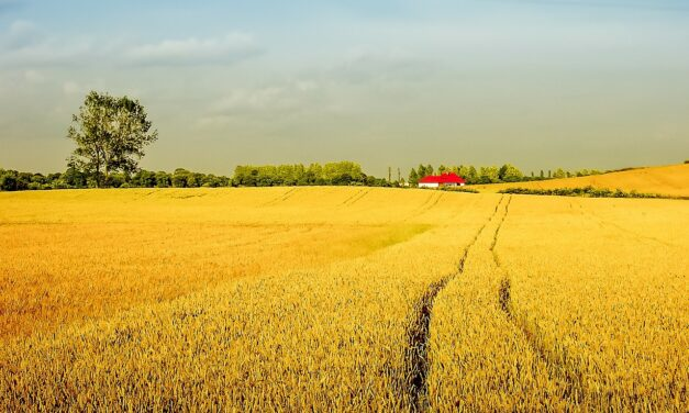 Noclegi na wsi to nie tylko agroturystyka
